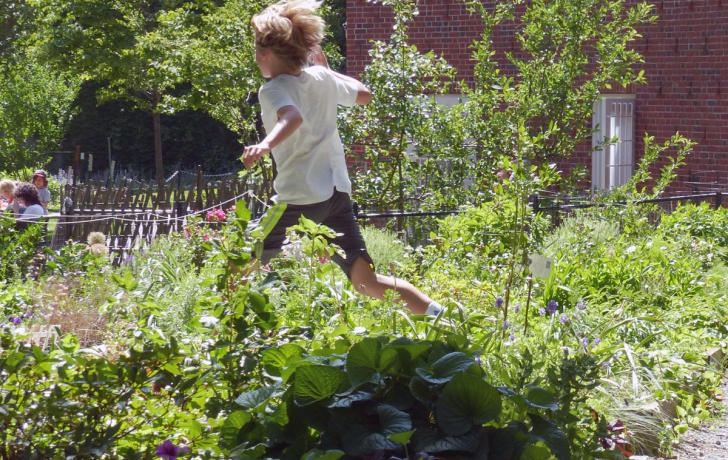 gardeners say that kids get so caught up in their fun that they are not aware of the garden plots they are running through photo carl glassmantribeca